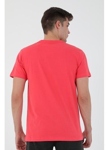Airlife Tişört Renkli